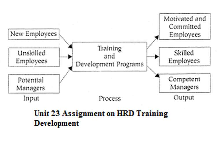 Unit 23 Assignment on HRD Training Development