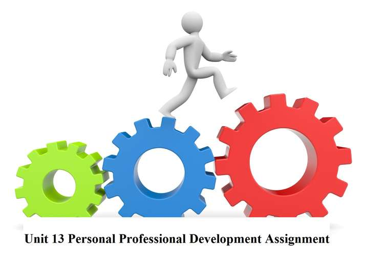 Unit 13 Personal Professional Development Assignment