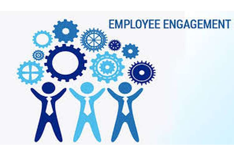 Employee Engagement Oz Assignments