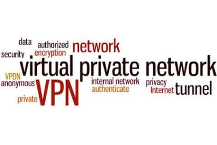 MN610 Virtual Private Networks Assignment Guide