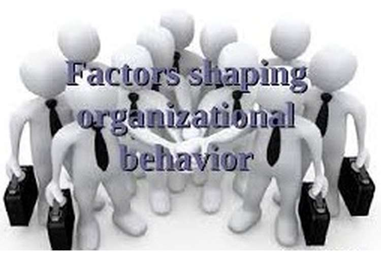 Unit 3 Factors of Organizational Behaviour Assignment
