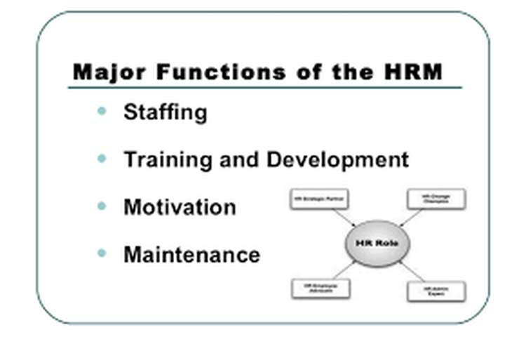 Unit 3 Function of Human Resource Management Assignment