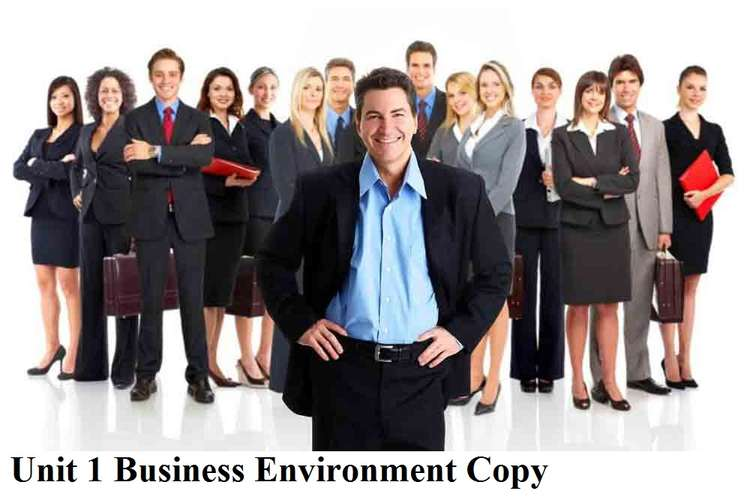 Unit 1 Business Environment Copy Assignment