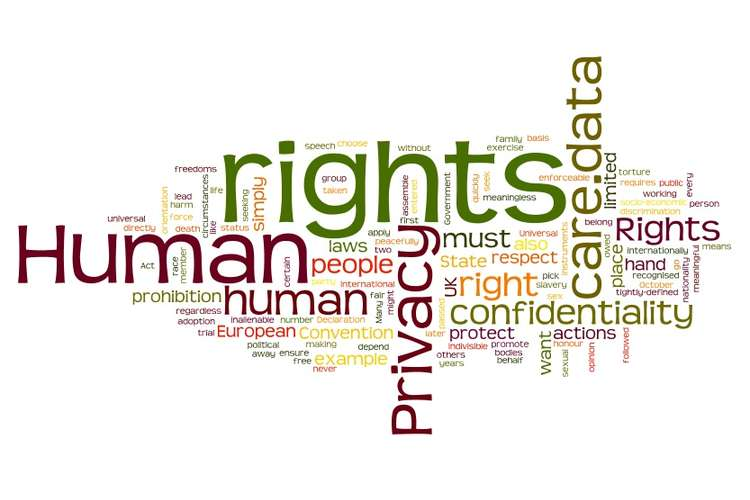 Human Rights Law Assignments Solution