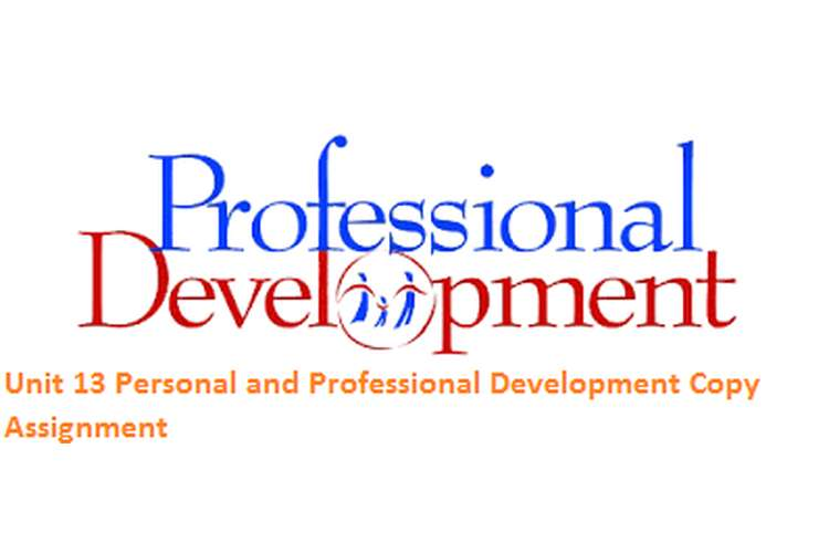 Unit 13 Personal and Professional Development Copy Assignment