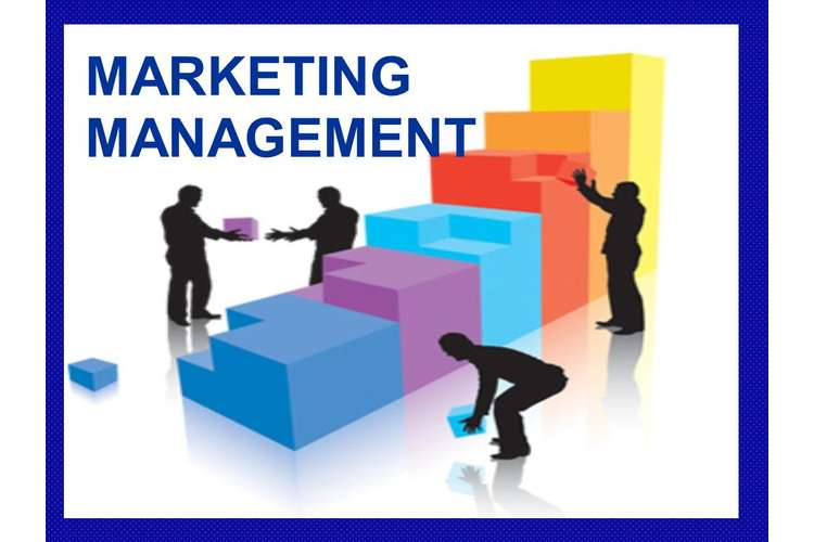 BHO1171 Marketing Management Assignment