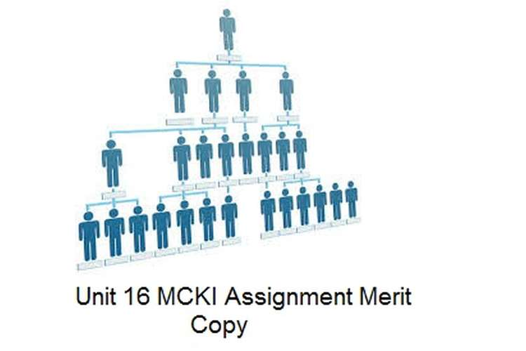 Unit 16 MCKI Assignment Merit Copy