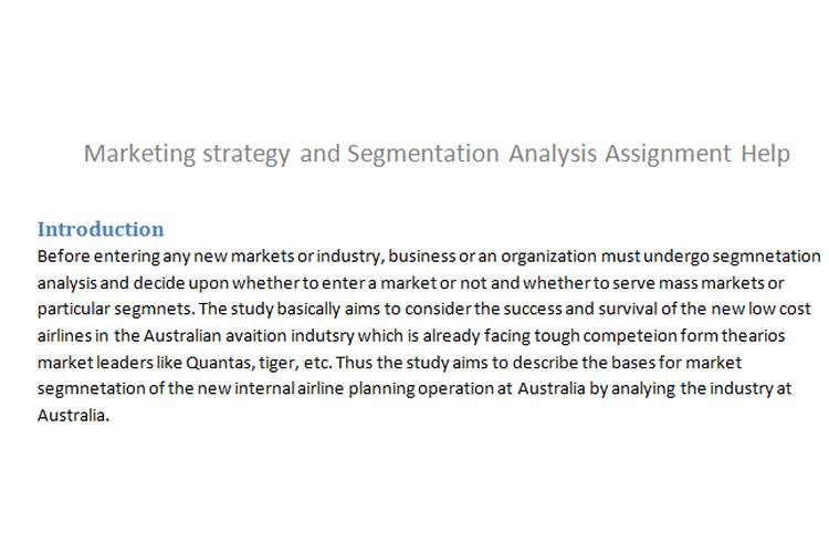 Marketing strategy Segmentation Analysis Assignment Help