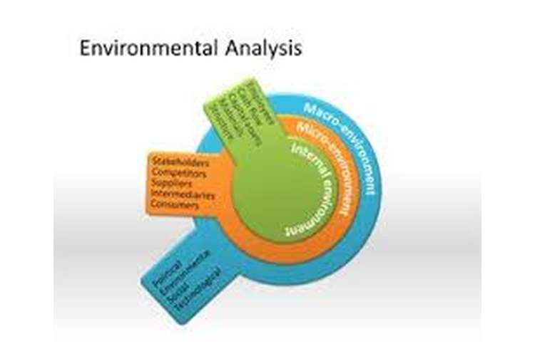 Environmental Analysis Oz Assignments