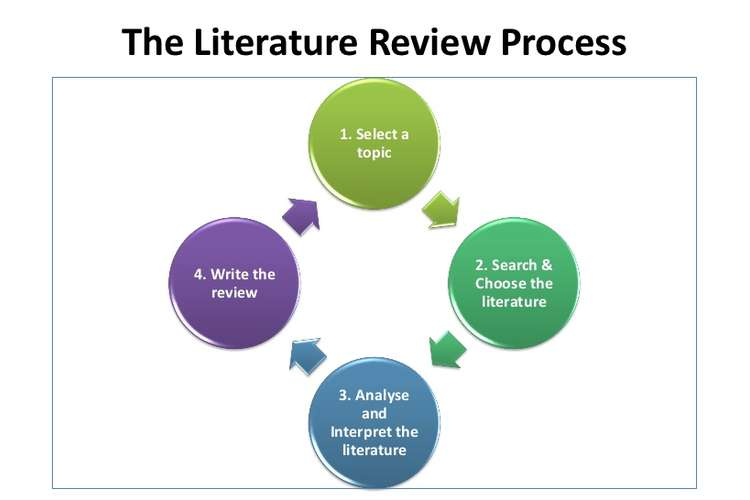 Critique Analysis on Literature Search Oz Assignments