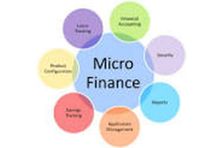 Micro Finance Assignment help