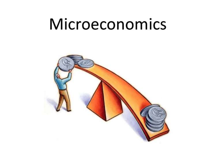 ECO 101 Microeconomics Assignment Help