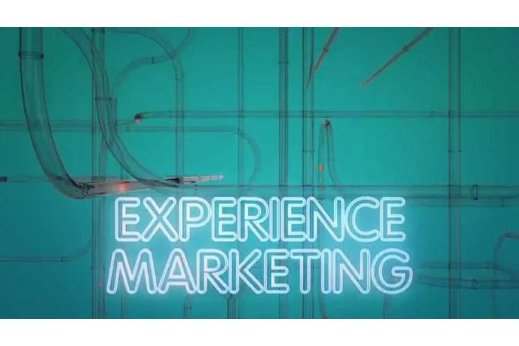 Industry Experience in Marketing Assignment