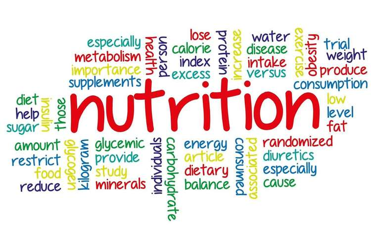 Introduction to Food Nutrition Oz Assignments