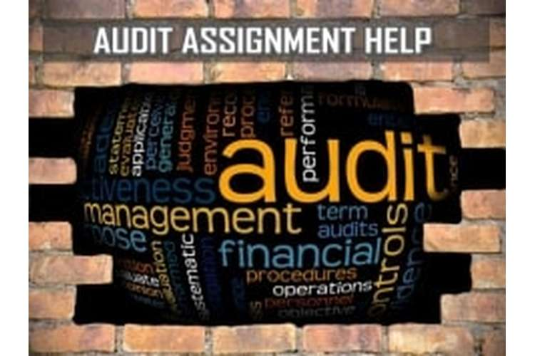 ACC305 Auditing and Assurance Assignment Help