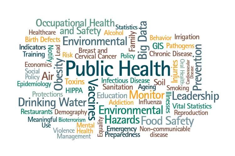 HST5161 Public Healthcare Management Oz Assignments