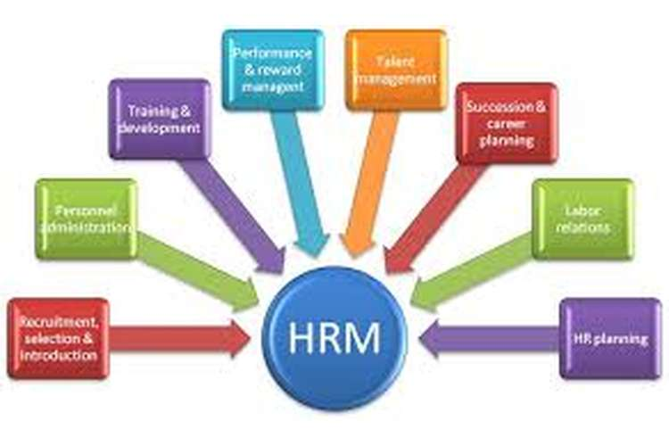 Unit 22 Managing Human Resources Solution Assignment