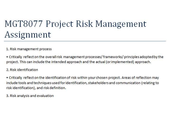 MGT8077 Project Risk Management Assignment
