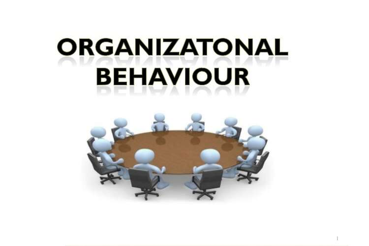 Organisational Behaviour Structure and Culture Assignment - Capco