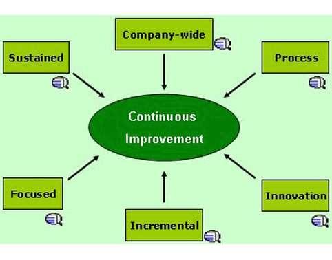 BSBMGT403 Implement Continuous Improvement