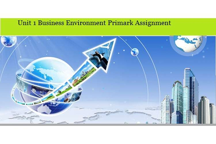 Business Environment Primark Assignment