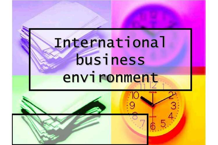 International Business Environment Oz Assignments