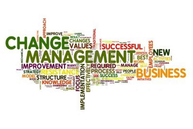 BSBINN601B Manage Organisational Change Assignment Help