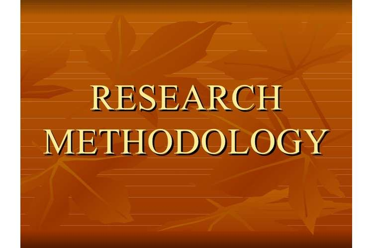 Research Methodology Assignment Help