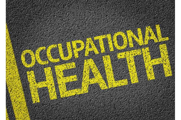 BSHSP1010 Occupational Health and Safety Assignments
