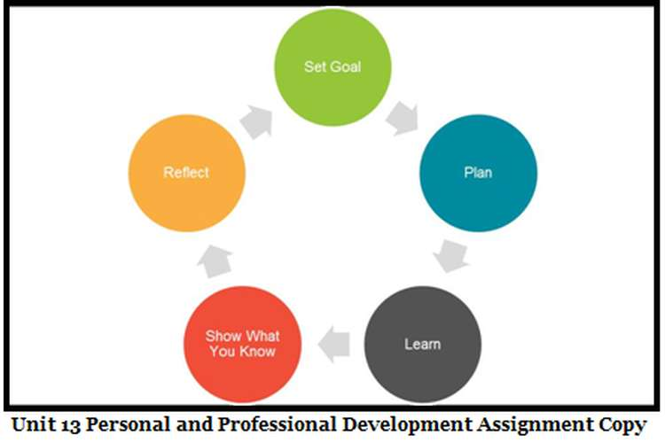 Unit 13 Personal and Professional Development Assignment Copy