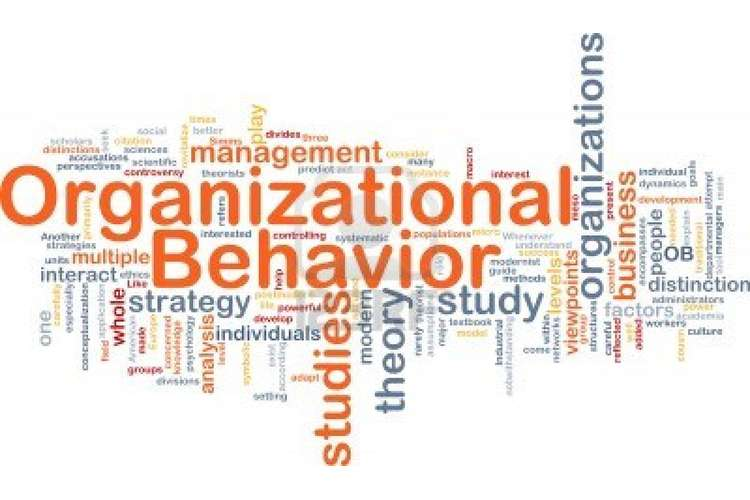 BBMM301 Management and Organizational Behavior Assignment