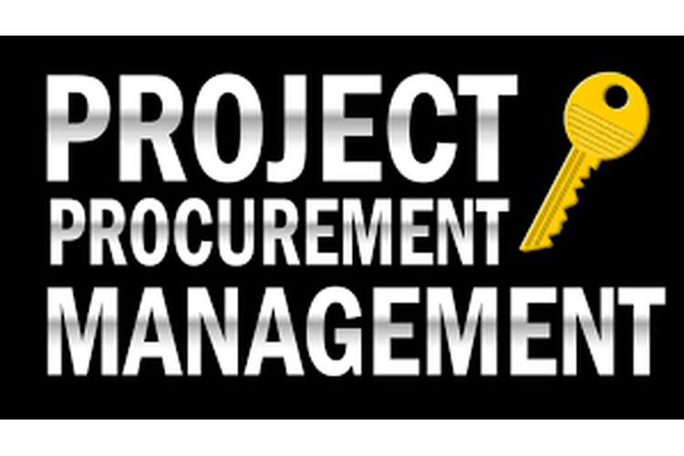Project Procurement Management Oz Assignment