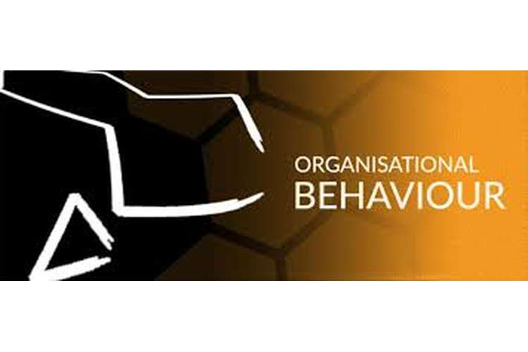 Unit 3 Organisational and Behavior Assignment