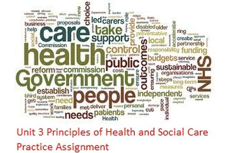 Unit 3 Principles of Health and Social Care Practice Assignment