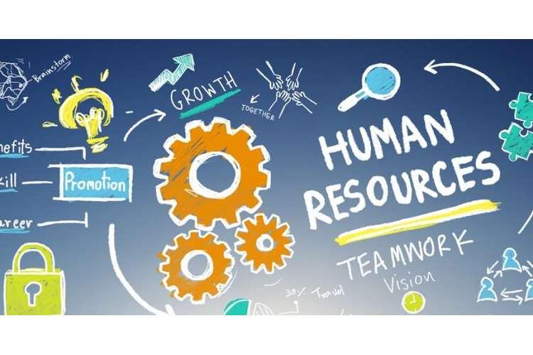 HRM502 Human Resource Management Oz Assignment