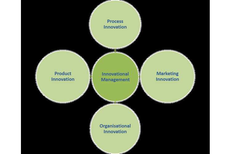MKTG1322 Product Innovation and Management Oz Assignments