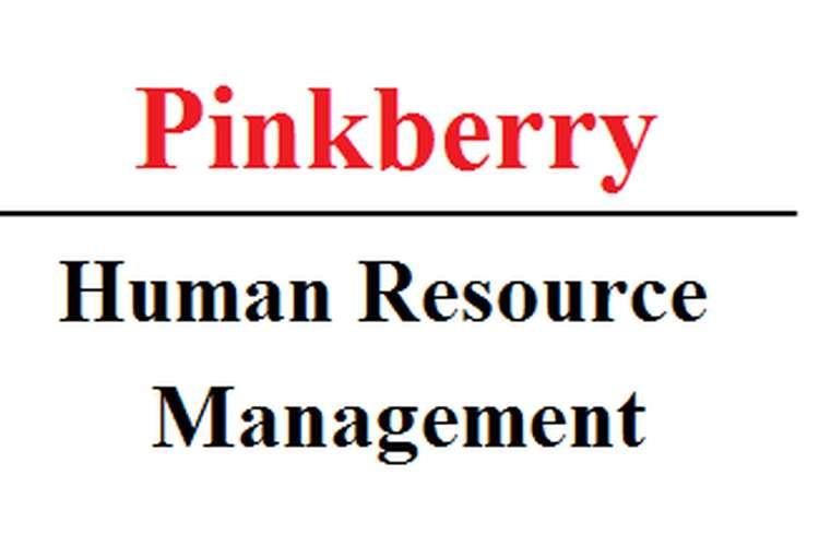 Pinkberry Human Resource Management Assignment
