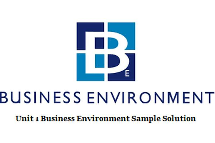 Unit 1 Business Environment Sample Solution