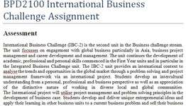 BPD2100 International Business Challenge Assignment