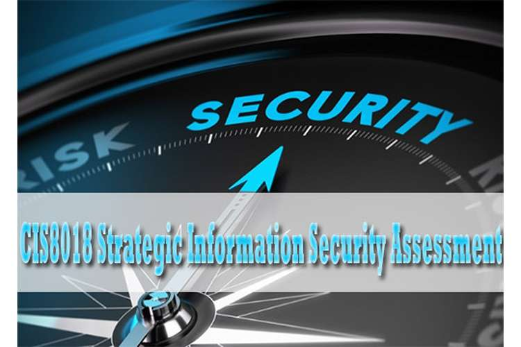 CIS8018 Strategic Information Security Assessment