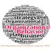 Unit 3 Organizational Structure and Behavior Assignment - CAPCO