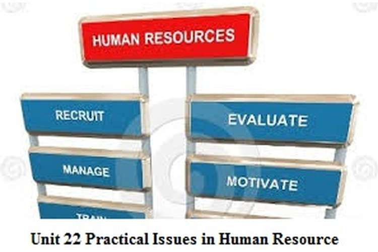 Unit 22 Practical Issues in Human Resource Assignment