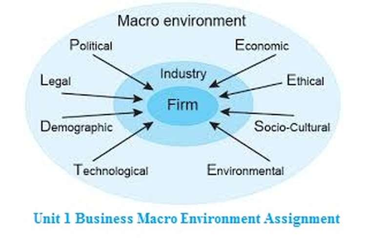 Unit 1 Business Macro Environment Assignment