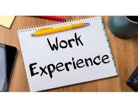 Work Based Experience in Travel & Tourism Assignment