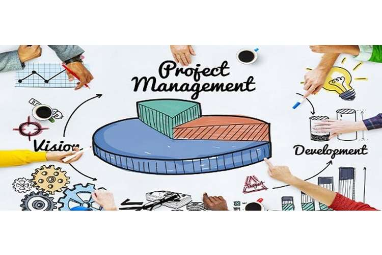 Business Project Management Oz Assignment