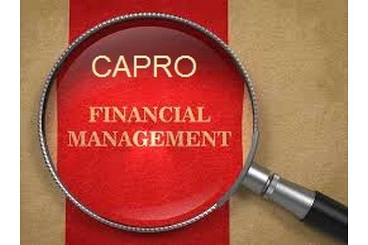 Unit 3 Organisations and Behaviour Assignment CAPRO