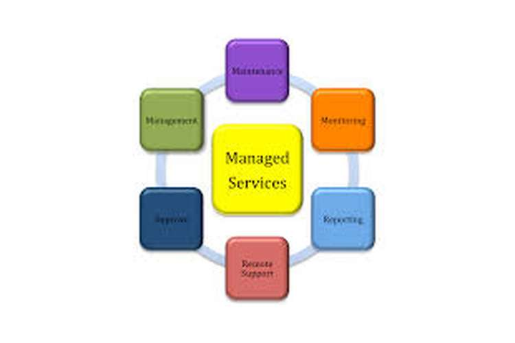Management Services Organization Assignment Help