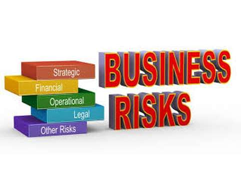 FNS60215 Evaluate Business Risk and Performance Assignment