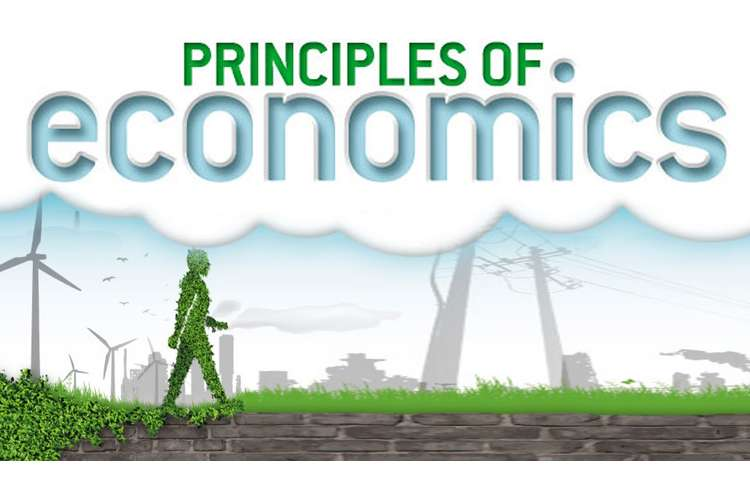 Economic Principle Assignment Solution