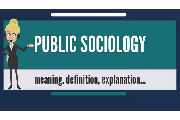 SOCY425 Public Sociology Assignments Solution